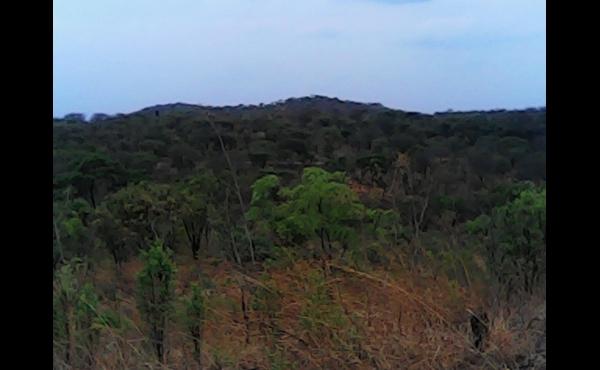 Chongwe kasenga scheme